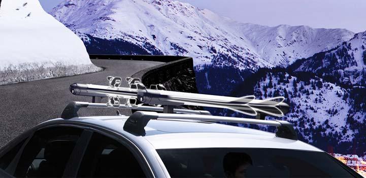Ski-carriers